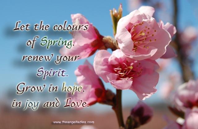 apple blossom fb copy